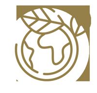 icone développement durable